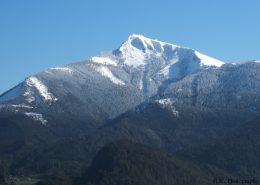 Oben auf dem Schafberg liegt noch Schnee