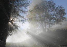 Auf dem Weg zum Zwölferhorn scheint die Sonne