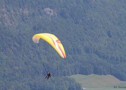 Paraglider fliegen vom Zwölferhorn über den See