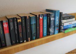 Reiseführer und Romane stehen bereit