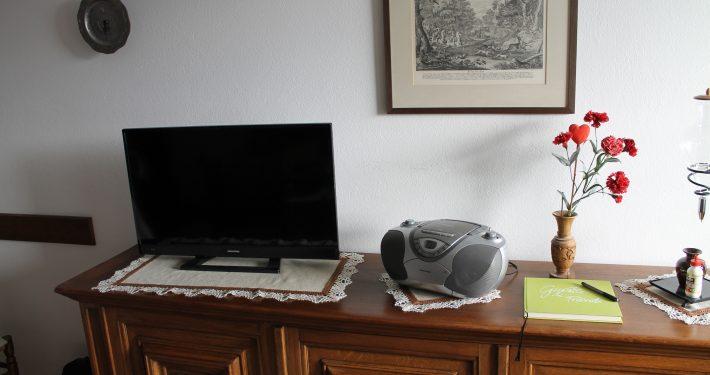 der neue Flachbild-Fernseher im Wohnzimmer